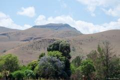 2015 - Südafrika Urlaub - 0111