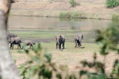 2015 - Südafrika Urlaub - 0838